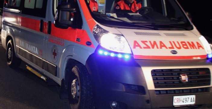 Finisce nel canale e contro un albero dopo lo scontro con un cinghiale, incidente mortale tra Fiorenzuola e Alseno