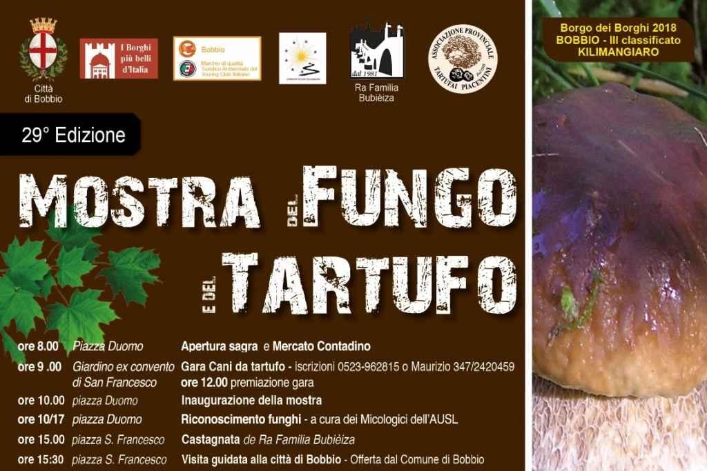 Bobbio Mostra Fungo tartufo uva